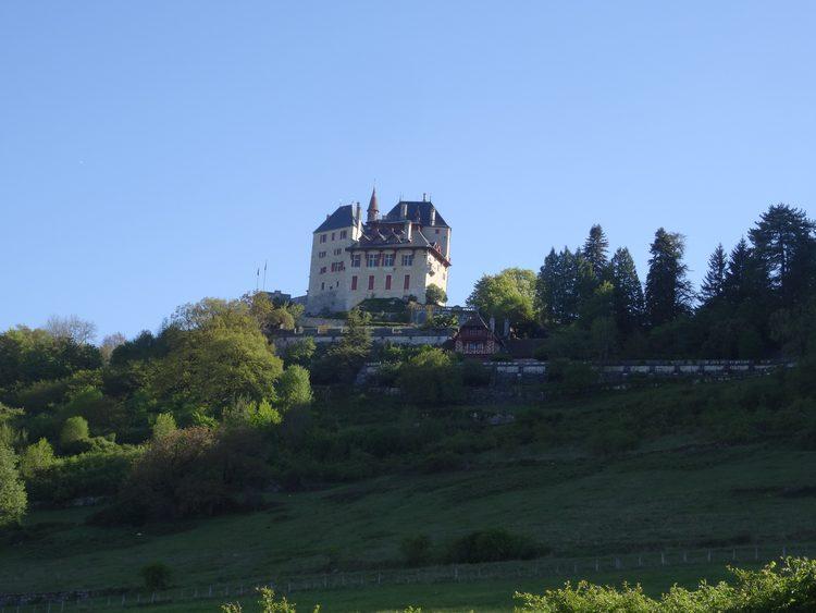 le château de Menthon St Bernard