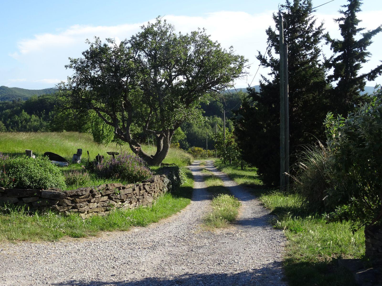 En route pour Carcassonne_05