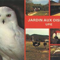upie_postcard_1